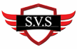 Select Vehicle Solutions